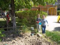 О посадке овощей на огороде