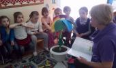 О проведении Недели инклюзивного образования